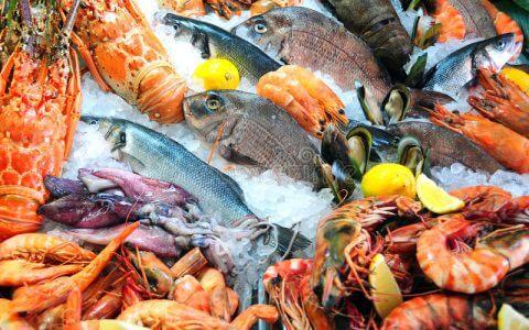 свежие-продукты-моря-21454398